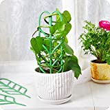 WINGOFFLY DIY Garden Plant Pot Mini Climbing