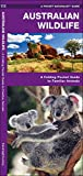 Australian Wildlife: A Folding Pocket Guide to Familiar Species (A Pocket Naturalist Guide)