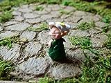 Miniature Fairy Garden Fairy Pixie Elf Figurine, Silly Peeking Flower Fairy