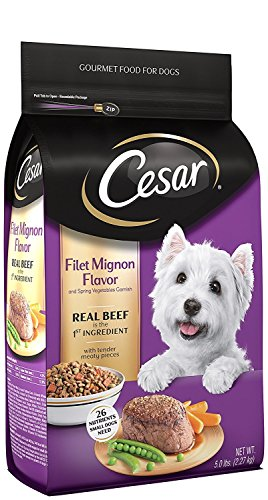CESAR-Dry-Dog-Food