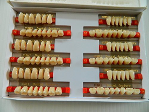Halloween Horror Prop - 3 sets of Dental Quality Resin Teeth for Prop Building!