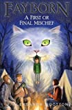 img - for A First or Final Mischief (Fayborn) (Volume 3) book / textbook / text book