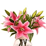 Outtop-5-Pcs-3-Heads-138-Inch-Lilies-Artificial-Lily-Flowers-Bouquets-Real-Touch-Fake-Flower-for-Home-and-Wedding-Decoration-Watermelon-Red