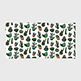 Cotton Microfiber Hotel SPA Beach Pool Bath Hand Towel,Cactus Decor,Sketchy Spiked Mexican Garden Foliage Boho Hand Drawn Line Art Cacti in Pots Decorative,Multicolor,for Kids, Teens, and Adults