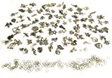 Wholesale 200 Pieces in Bulk Lots Jewelry Making Silver Charms & Jump Rings for DIY Crafting, Mixed Smooth Tibetan Alloy Metal for Dangle Bracelet & Necklace Pendants by Bayani Creative Group