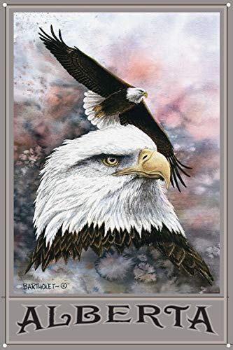 456Yedda Metal Sign Alberta Canada Bald Eagle Metal Art Print (12