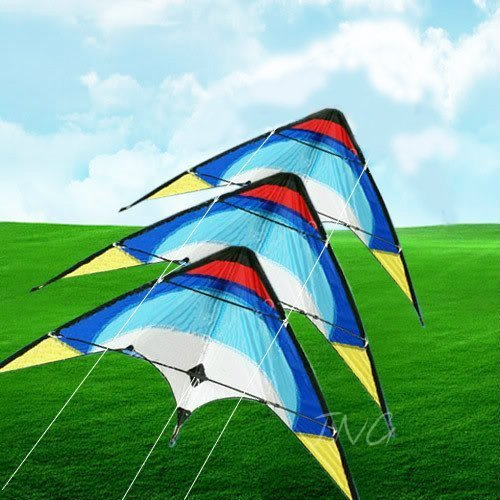 Eye-Catching 3 Stack Dual Control Sport Stunt Kite Set, Outdoor Beach Park Garden Fun by L.W.