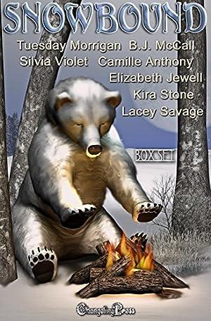 book cover of Snowbound (Box Set)