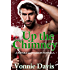 Up the Chimney: (A Pistols & Passion Novella)