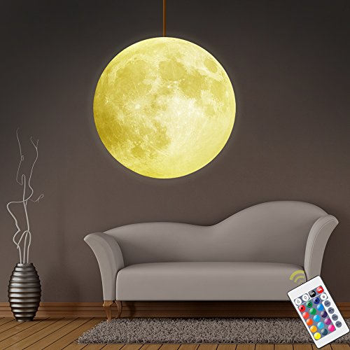 Half Moon Pendant Light