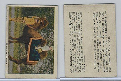 V67 Neilson's Chocolate, Wild Animals, 1930's, C2 Bactrian Camel
