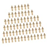 Flameer 64Pcs Brass Replacement Tip/Jet Camping Cooking Stove Nozzle for Propane Gas