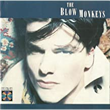 incl. Celebrate The Day After You (CD Album The Blow Monkeys, 13 Tracks)
