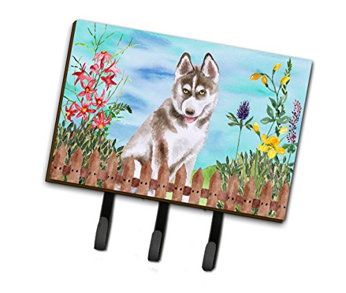 (Caroline's Treasures Siberian Husky Grey Spring Wall Hook, Triple,)