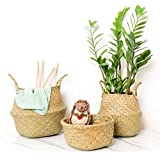 """RISEON Natural Seagrass Belly Basket Panier Storage Plant Pot Collapsible Nursery Laundry Tote Bag with Handles (15"""" (38x34cm))"""