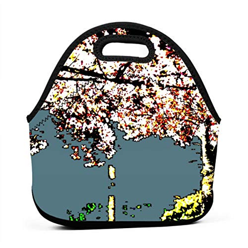 (Cherry Flame_841 Waterproof Insulated Lunch Portable Carry Tote Picnic Storage Bag Lunch box Food Bag Gourmet Handbag For School)