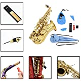 Buytra 10-in-1 Saxophone Cleaning Kit for Flute