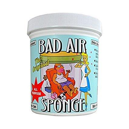 Amazon.com: Esponja Bad Air absorbente de olores: Mascotas