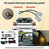 Elliot Jonah Car Blind Spot Monitoring