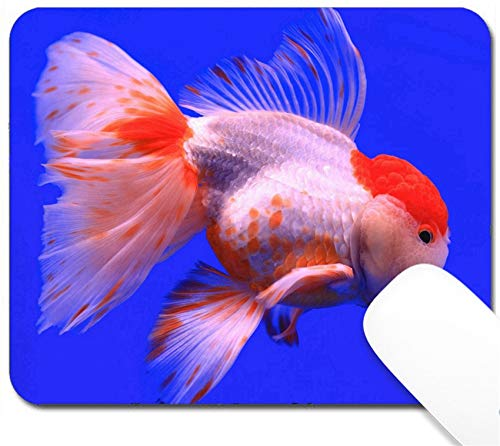 MSD Mouse Pad with Design - Non-Slip Gaming Mouse Pad - Image 30454748 Fish on Blue