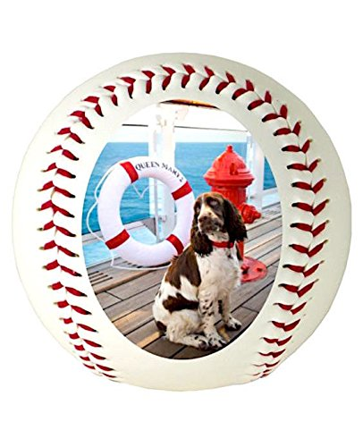 Custom Personalized Baseball Ships in 1 Day, High Resolution Photos, Logos & Text on Baseball Balls for Players, Trophies, MVP Awards, Coaches, Personalized Gifts