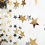 Lacheln Star Party Decorations Birthday Baby Shower Christmas Hanging Paper Garlands,Silver+Gold,26 Feet Total