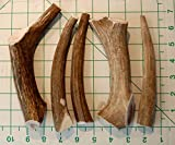 Premium Deer Antler Pieces - Dog Chews - Antlers by