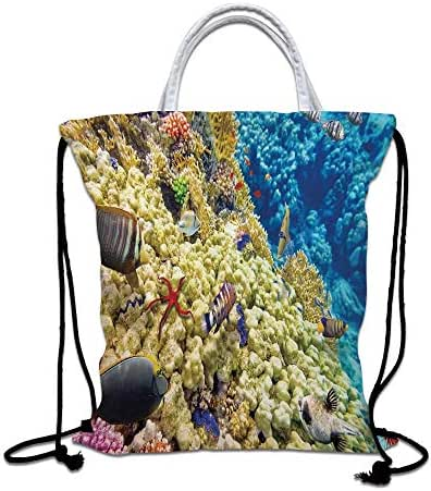 Ocean Decor Drawstring Backpack,Colorful Life Natural Environment Deep Down in The Sea Scenery Exotic Holiday Picture Lightweight Gym Sackpack Tote Bags for Gym Hiking Travel Beach,Blue Beige