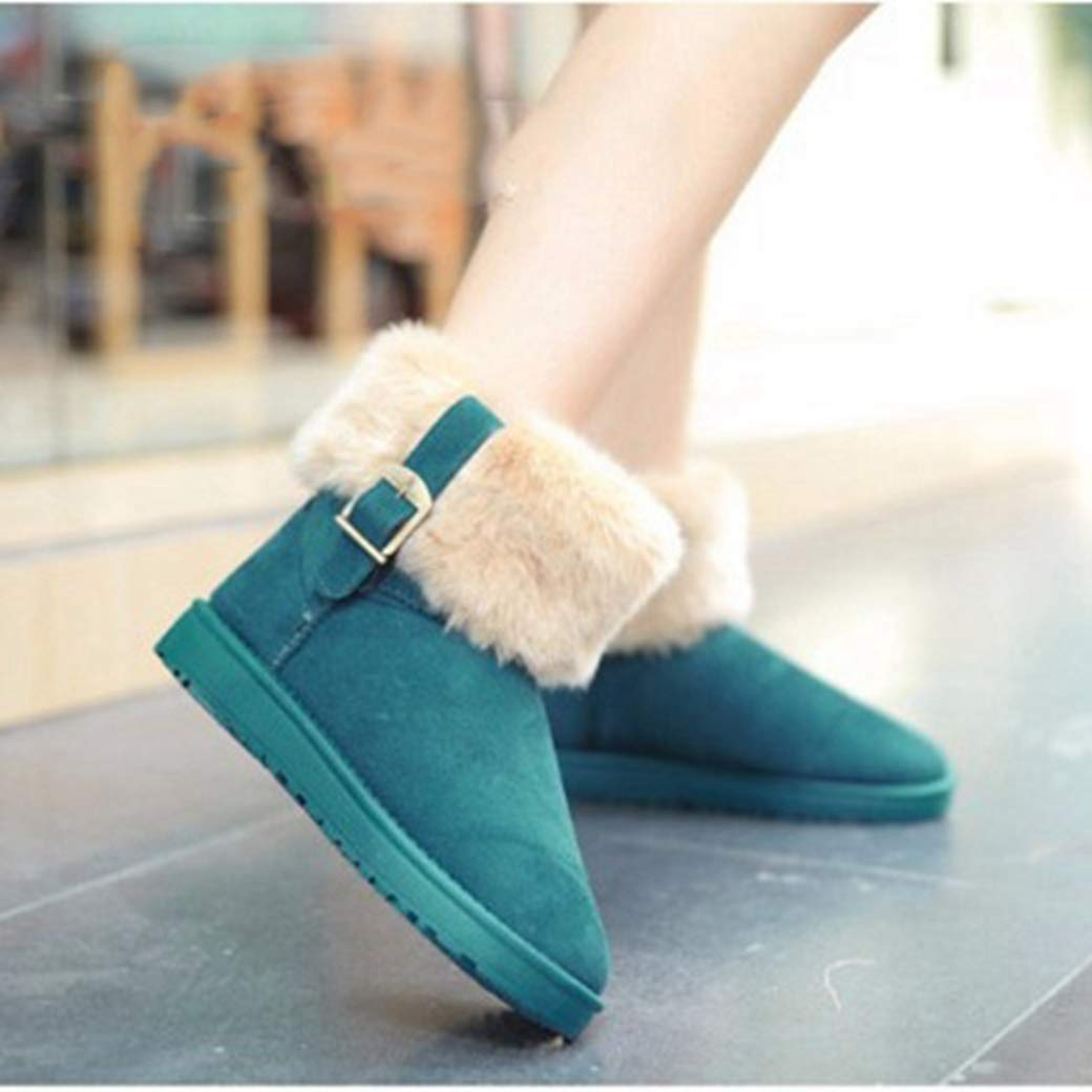 Ron Billy Women Winter Boots Suede Ankle Snow Boots Female Warm Fur Plush Botas Slip-On Boots