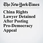 China Rights Lawyer Detained After Posting Pro-Democracy Appeal | Steven Lee Myers