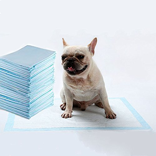 Dog Training Pads- Maximum-Absorption Puppy Pads (50-Pack M: 23.6