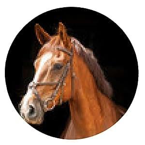 alfombrilla de ratón Retrato del caballo rojo sobre fondo negro - ronda - 20cm