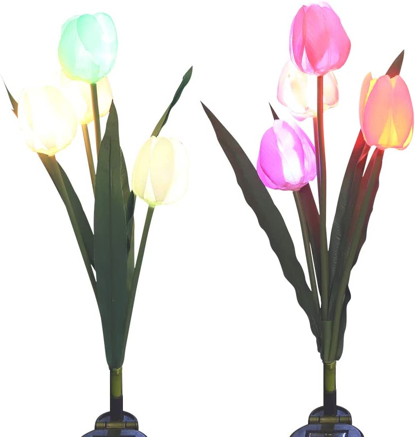 LED Solar Tulip Lights