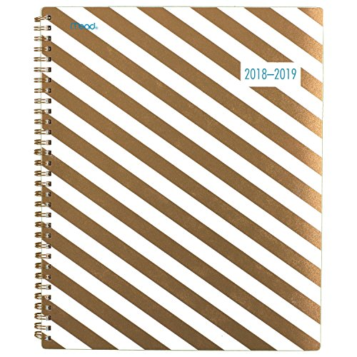 Mead 2018-2019 Academic Year Weekly & Monthly Planner, Large, 8-1/2 x 11, Gold & Bold, Stripes (CAW508D1)