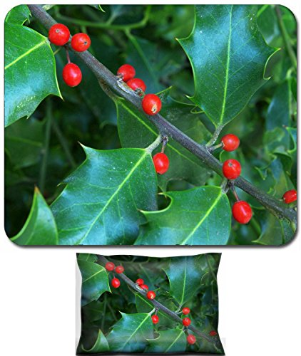 Liili Mouse Wrist Rest and Small Mousepad Set, 2pc Wrist Support Macro of holly berry Nature compositoin Photo 9414295