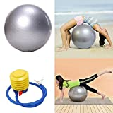 Yoga Ball 25'' 65cm Exercise Gymnastic Fitness Pilates Ball/gym Ball/ Yoga Ball/ Balance Ball/ Fitness Ball Anti-burst Stability with Air Pump (Silver)