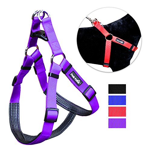 Padded Comfort Walking Harness Medium product image
