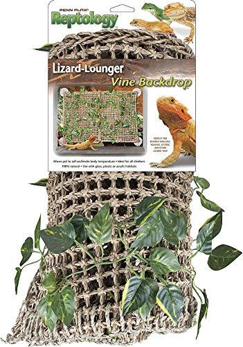 lizard lounger bridge