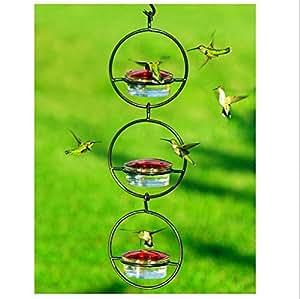 Diseño de colibrí Feeder, para colgar Wild Bird Feeder, moderno pájaro semillas, cuenco de vidrio, jardín pájaro alimentos plato