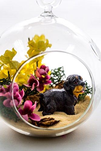 "Nautical Crush Trading Terrarium Kit | Dog Lovers Pet Series | Complete Terrarium Gift Set | 4"" Glass Globe Terrarium Container | Dog Miniature | Yellow Sand | Green Moss TM ()"
