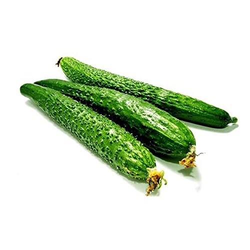 (Cucumber Seeds 10g Cucumis Sativus Pickling Long Green Improved Garden Vegetable Organic Chinese Fresh Fruit Herb Climbing Seeds Planting Outdoor Cooking Dish Pickles Salad Taste Sweet Delicio)