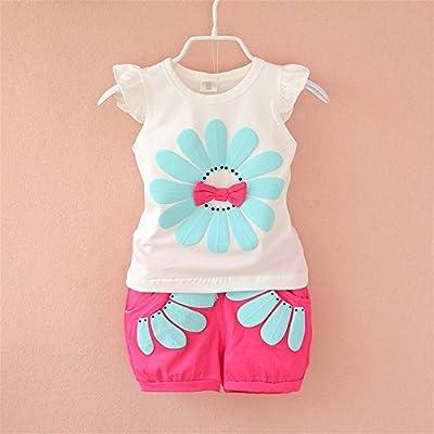 BibiCola Toddler Baby Girl Flower Clothing Sets Lovely Summer T-Shirt+ Floral Shorts 2pcs Kids Shorts Sets: Clothing