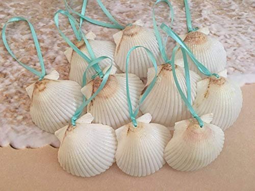Tropical Christmas Tree Ornaments - White Glitter Seashell Christmas Ornaments with Turquoise Ribbon, 10