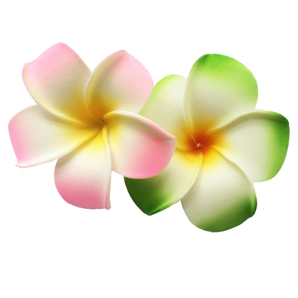 easy2rich 2 PCS 7cm Hawaiian Frangipani Plumeria Foam Head Flower Party Beach Hair Clip (Orange + Green) WA0007Orange+Green
