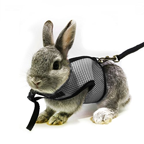 ft Harness with Stretchy Leash for Bunny Cat (Gray) ()