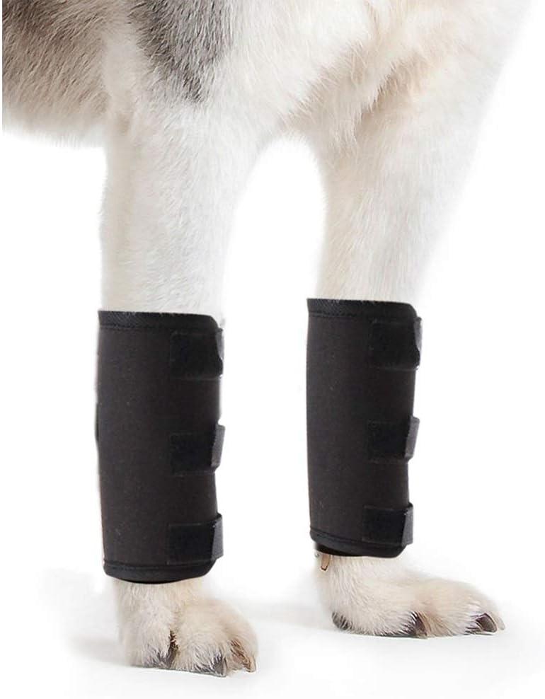 Z-PET Rodillera For Perro Soporte For Mascotas Patas Delanteras del Codo Soporte For Tobillo Manga Protectora Lesión Quirúrgica Vendaje del Vendaje, 1 Par (Size : L)
