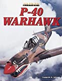 img - for P-40 Warhawk (Warbird History) book / textbook / text book