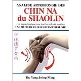 Analyse approfondie des chin na shaolin