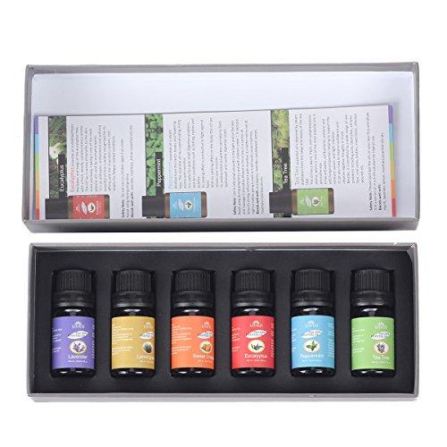 LAVEN® Top 6 bottles 100% Pure Essential Oils Best Buy Gift Set- 6/10ML Therapeutic Grade Essential Oils (Lavender, Tea Tree, Eucalyptus, Lemongrass, Sweet Orange, Peppermint)