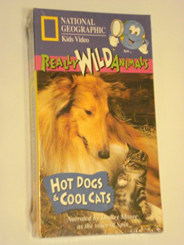 Really Wild Animals Hot Dogs And Cool Cats